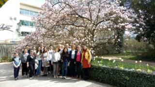 Ariv-musee-ecole-nancy-tulipier (1)